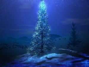 Sorprenden con cantos de navidad en el Mall