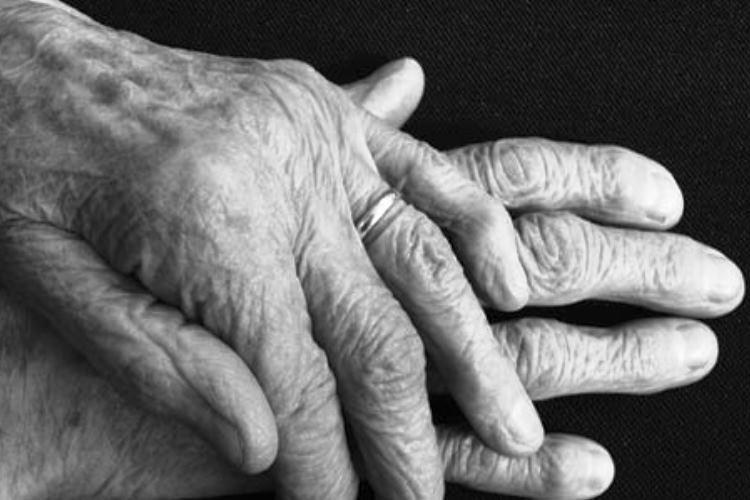 Las arterias son la clave contra el envejecimiento
