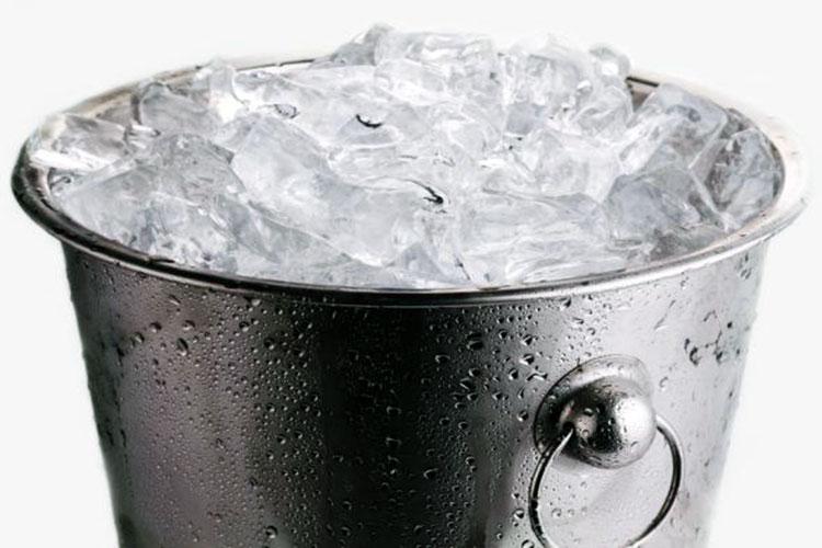 Hasta los perros aceptan el desafío del cubo de agua