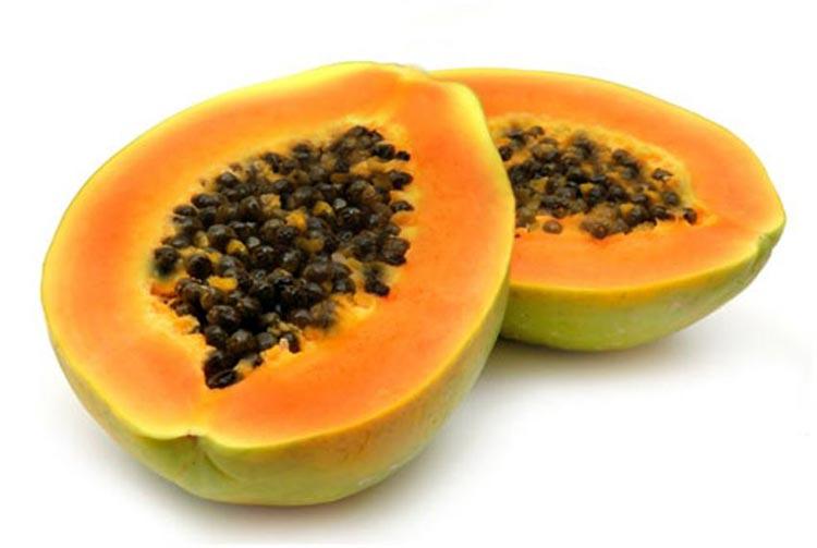 Propiedades curativas de la hoja de papaya