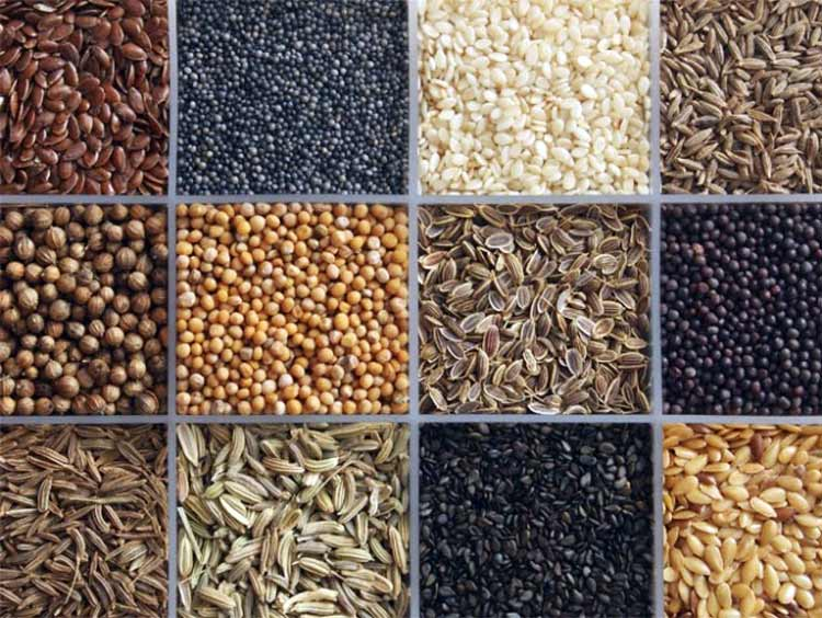 7 Súper semillas para la Salud