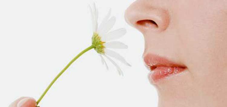 Por qué las mujeres tienen mejor olfato?