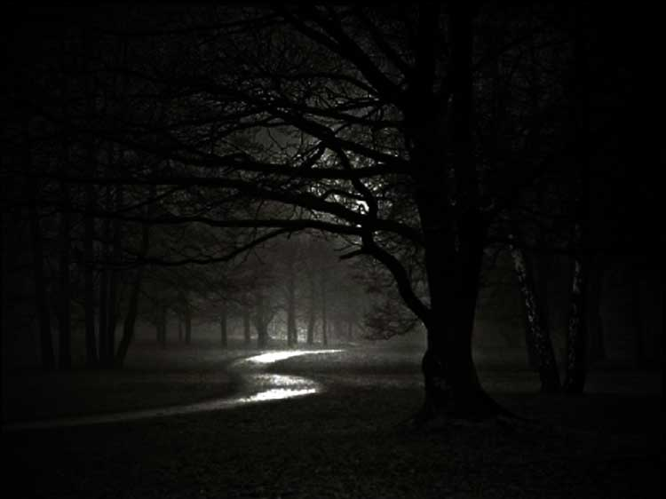 Una noche oscura es buena para la salud