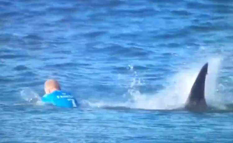 Ataque de tiburón en competencia de surf