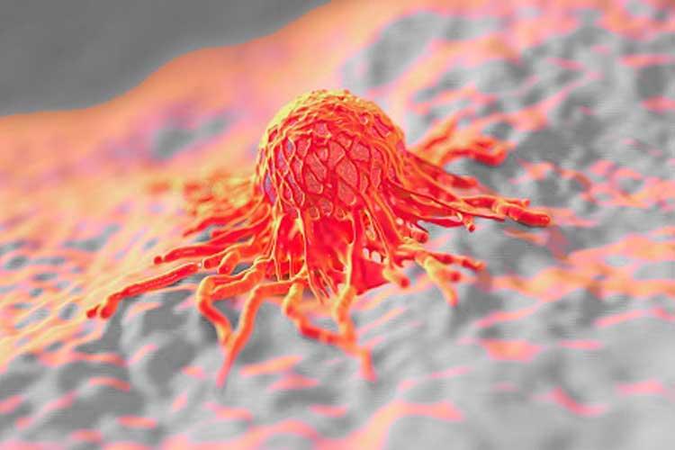 Readaptación de células destruye el cáncer