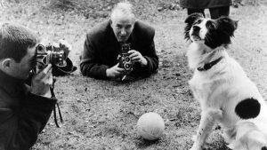 El Perro héroe que salvó a Inglaterra en 1966