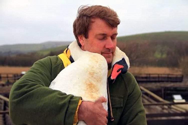 Abrazo de amor de un ave a su salvador
