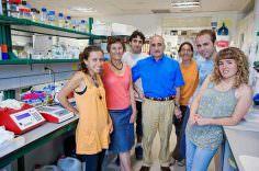 Investigadores crean virus para atacar el cáncer