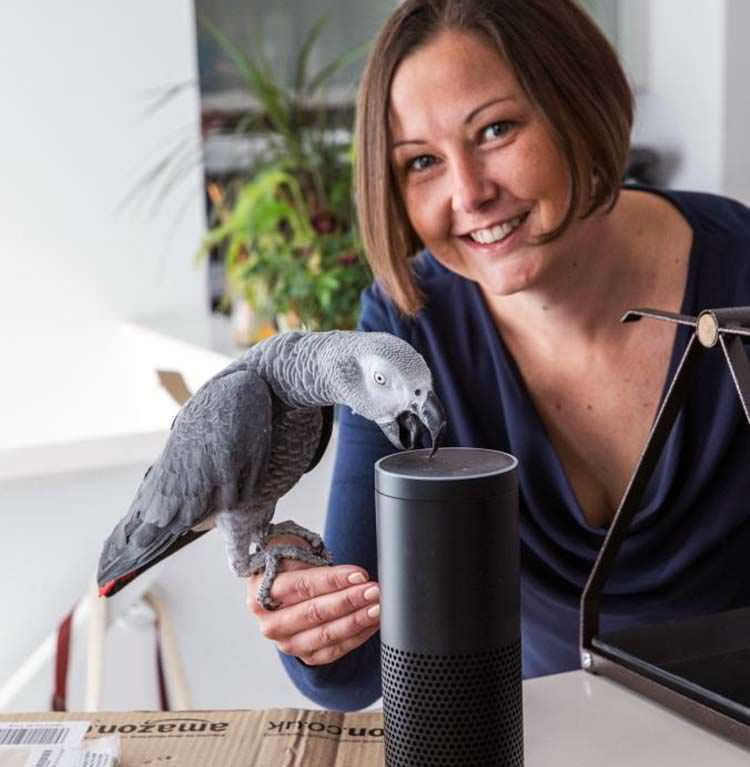 Un Loro hace una compra en Amazon