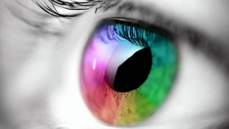 Colores - ¿Cómo los vemos? ¿Hay gente que ve más colores?