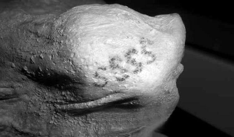 Cuál es el Tatuaje más antiguo del mundo?